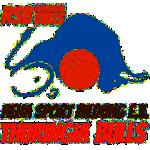 Reha-Sport-Bildung e.V. Thuringia Bulls